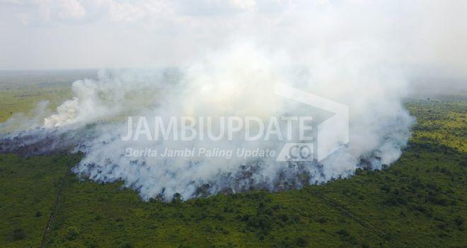 23 Hektare Lahan di Dendang Terbakar, 2 Relawan MPA